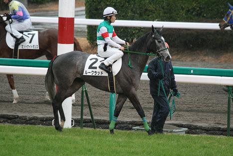 12-返し馬.JPG
