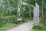 13-20090705_神仙沼.JPG
