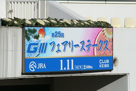 1フェアリーS.JPG