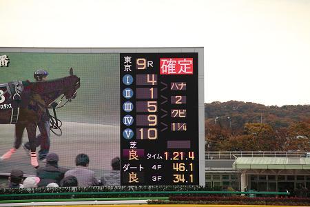 2009-11-28-16.jpg