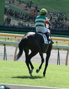 9_返し馬.jpg