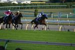 スカーレット-レース1.JPG